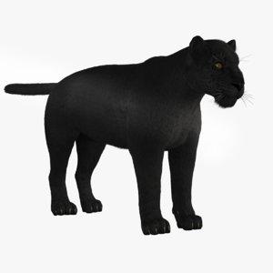 black leopard 3D model