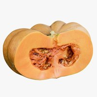 3D model realistic pumpkin clean cutted