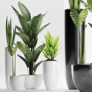 plants 199 indoor 3D model