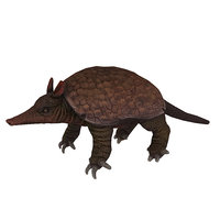 battleship Animal Low-poly armadillo