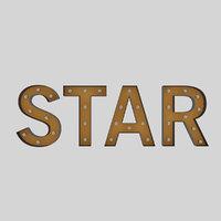 3D sign bulb star
