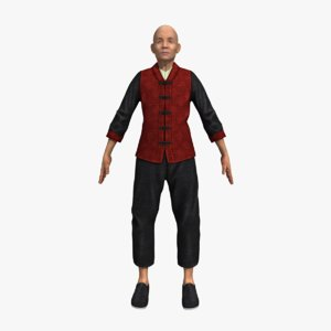 3D kung-fu master model
