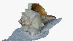 3D model shell scan