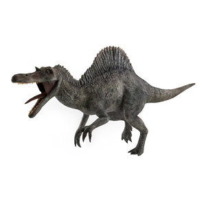 3D realistic spinosaurus rigged