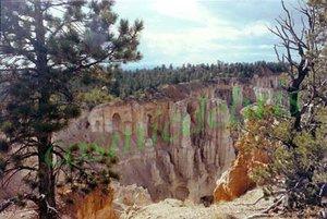 Bryce Canyon, Utah 02 tm.jpg