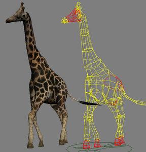 giraffe max