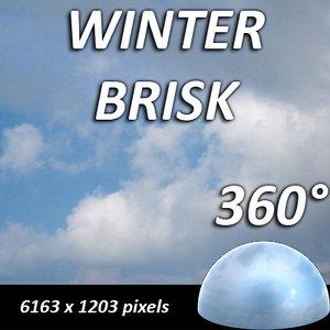 winter brisk