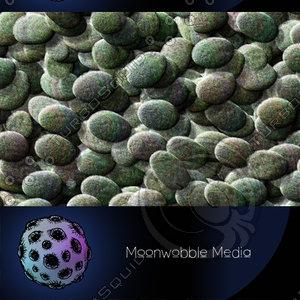 Dotty Mossy Zen Rocks - CG Texture
