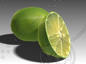 lime fruit 3d max