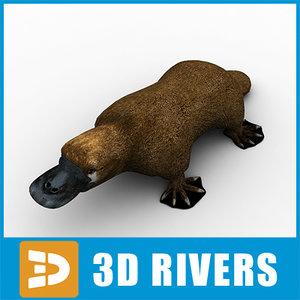 platypus animals mammal 3d model
