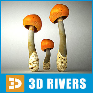 caesar amanita mushroom 3d 3ds