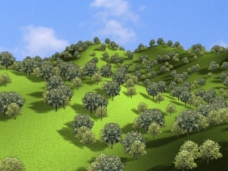 trees hills forest scene 3d max