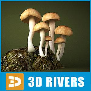 brick mushroom cap 3d obj