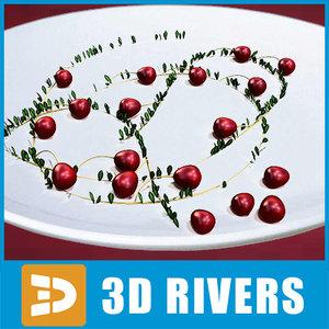 sour cranberry berries 3ds
