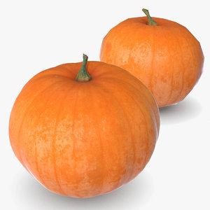 3D pumpkin 4 scan model