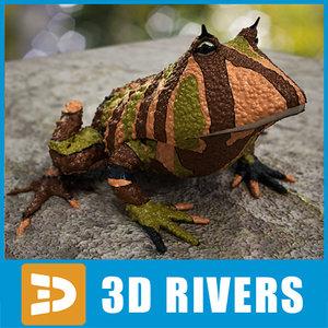 3d model of argentine horned frog