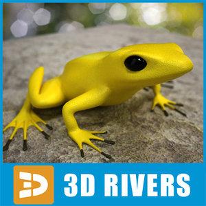 3d model poison dart frog