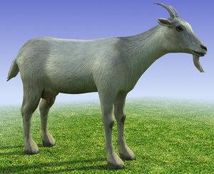 3ds max goat