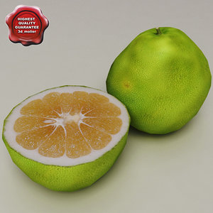 3d model pomelos modelled