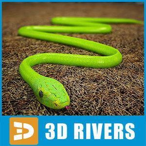 3d green mamba snakes