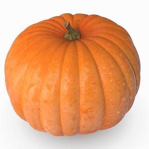 pumpkin 5 scan 3D model