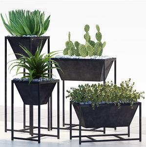 plants 198 3D