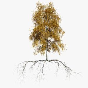 3D birch autumn 2