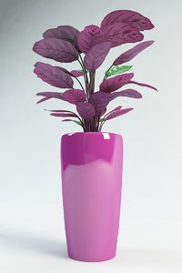 3d 3ds calathea pot