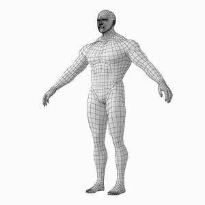 human male bodybuilder body 3D model