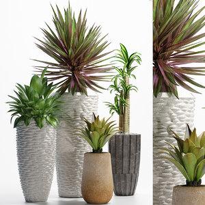 3D plants 206