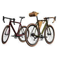 Modern bicycle in two shades