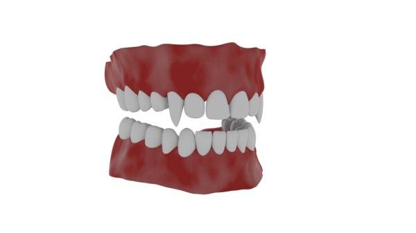 vampire teeth 3D model