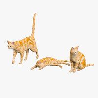 cat 3d max