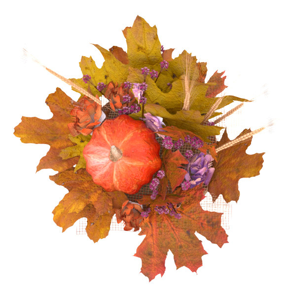3D autumn flower arrangement pumpkin model