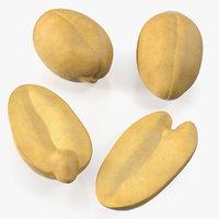 3D model raw peeled peanuts nut