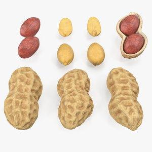 peanuts set nut model