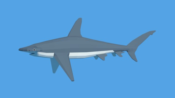 hammerhead shark 3D model