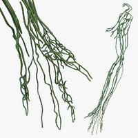 3D human arm lymphatic model