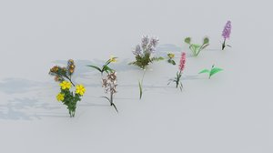 rare flowers 3D