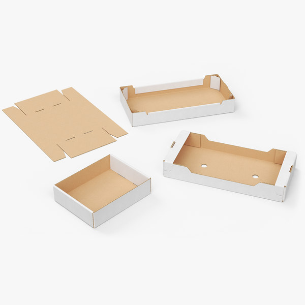 3D trays cardboard boxes model