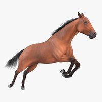 jumping bay horse racing model