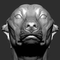 greyhound head model