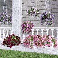 petunia landscape design 3D model