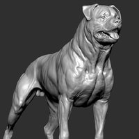 Rottweiler Dog VFX Zbrush Sculpt