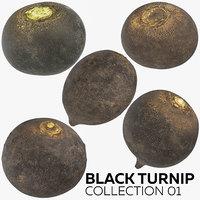 black turnip 01 3D