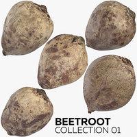 beetroot 01 3D