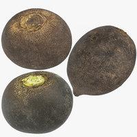 black turnip 02 model