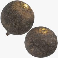 3D black turnip 03 model