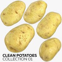 clean potatoes 01 3D model