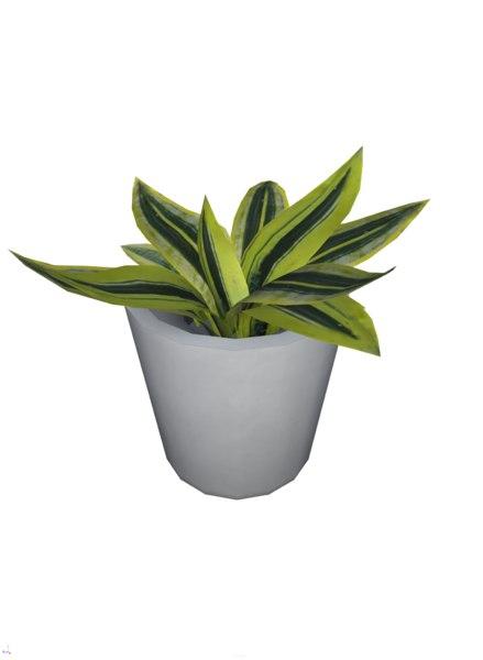 foliage plant pbr 3D model